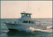The Stephanie  Fishing boat, Andy Griffiths Charters, Key West, FL